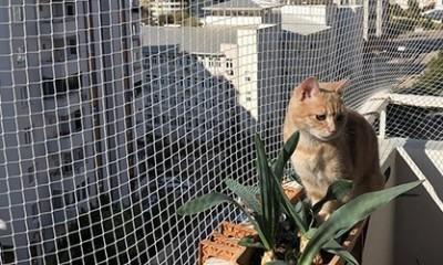 Adana İnşaat Filesi Güvenliği